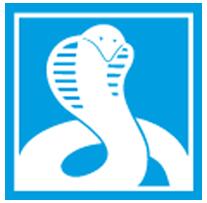 Tronçonneuse MEP Cobra 352